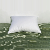 travel pillow, small pillow, feather pillow