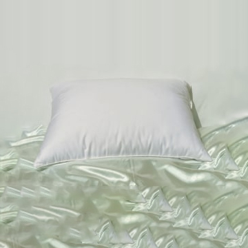 Downfeather Pillows 10 Down 90 Feathers