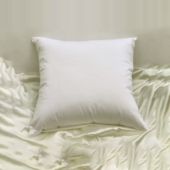 Down Pillows European size, square feather pillow